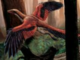 Archaeopteryx (Lord Caesar)