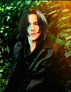 Young Adult Severus Snape