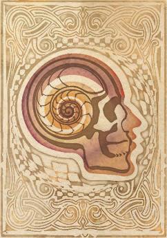 Illusion (SB)