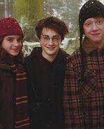 The golden trio 3
