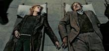 Remus Lupin & Nymphadora Tonks Deceased.png