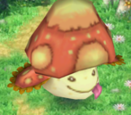 Death Fungus