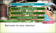 RF4 I want a Cooking Tool.png