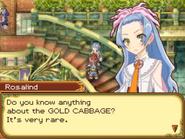Rosalind Golden Cabbage