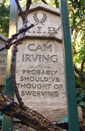 Cam Irving