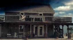 Grey Gull.png