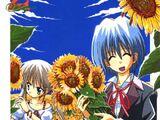 Hayate no Gotoku! Manga Volume 2