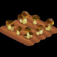 Mushroom Stage 3