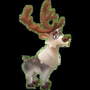 Grey Reindeer