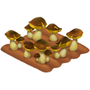 Mushroom Stage 4