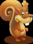 Squirrel Idle