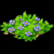 Blue Flower Path