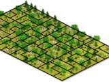 Expansion/Farm