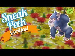 Hay Day Sneak Peek-GORILLAS!! New Sanctuary Animal! Day at the Zoo!!