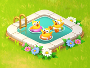 Baby Chick Pool