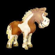 Pinto Horse Sleeping