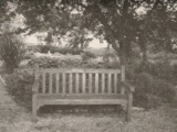 Botanic Garden (Will's world)
