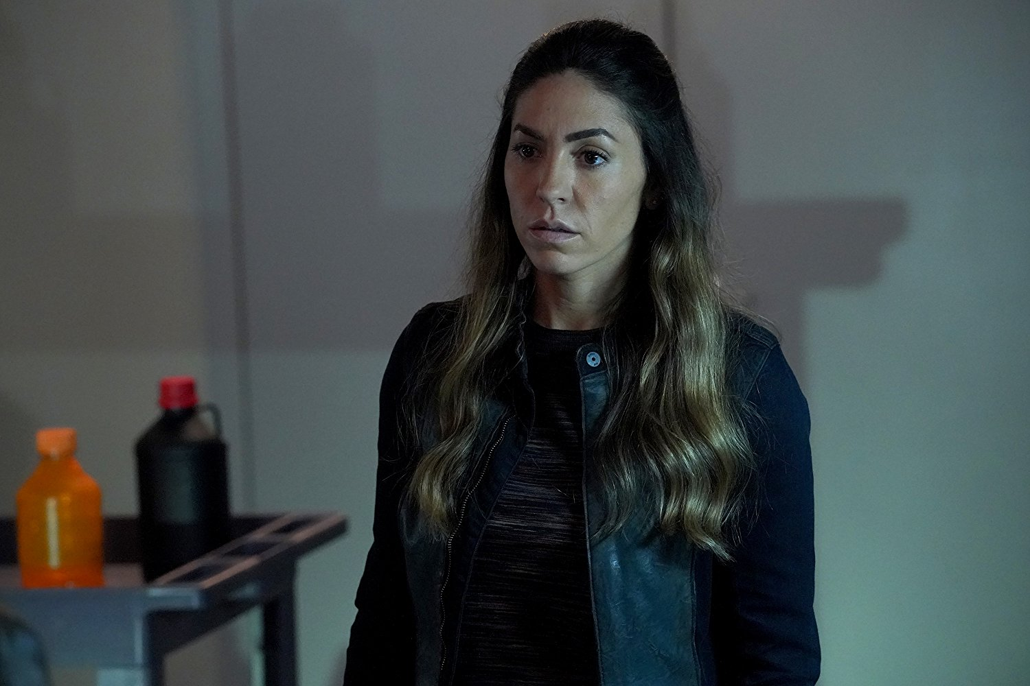 Agents of S.H.I.E.L.D.: All the Comforts of Home