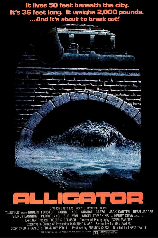 Alligator (disambiguation)