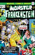 Frankenstein Monster 1