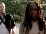 Walking Dead: This Sorrowful Life