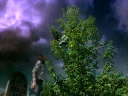 American Gothic 1x2 002.jpg