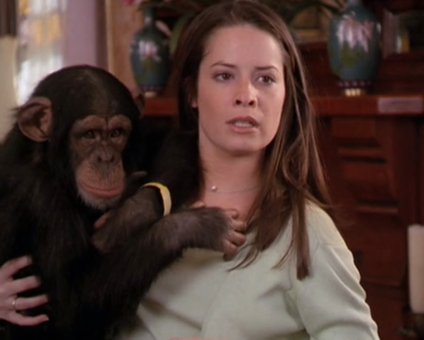 Charmed: Astral Monkey