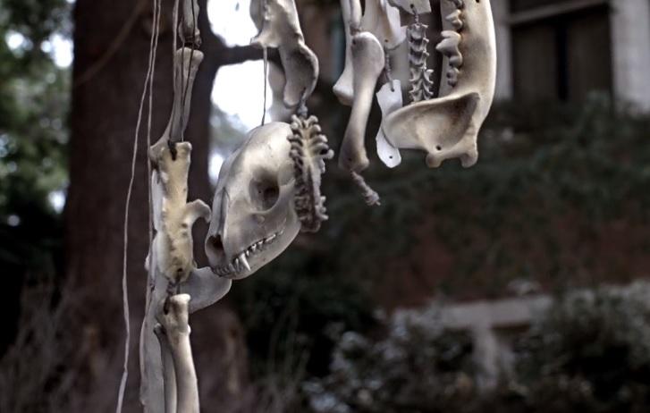 American Horror Story 1x01 012.jpg