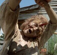 Walking Dead 2x08 003.jpg