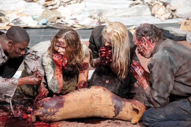 Walking Dead 2x01 001.jpg