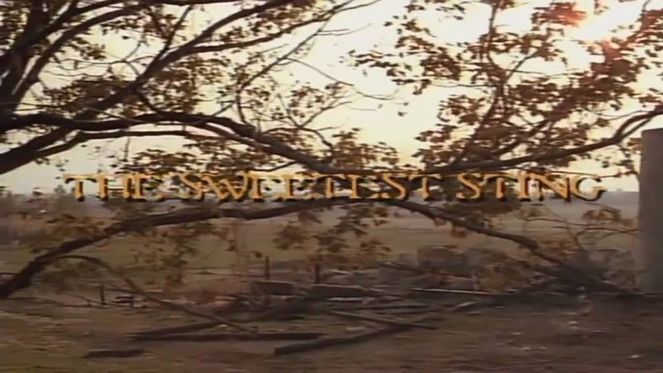 Friday the 13th: The Sweetest Sting