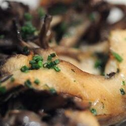 Marinated Hen of the Woods
