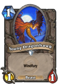 Young Dragonhawk(629).png