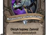 Hyldnirska wojowniczka