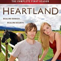 Heartland gift horse online betting nfl 2021 week 1 betting odds