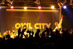 Owl City Live-7878.jpg