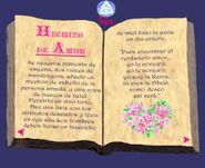 El libro de las sobras AMOR hechizo de amor