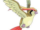 Bird Jesus