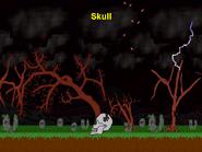 640x480 Skull