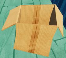 Открытая коробка