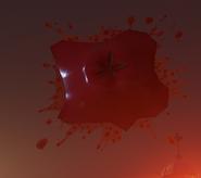 Кусок помидора