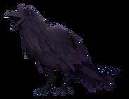 HE Crow