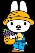 Sanrio Characters Papa (My Melody) Image003
