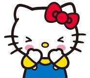 Sanrio Characters Hello Kitty Image030