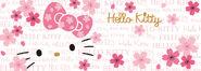 Sanrio Characters Hello Kitty Image074