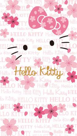 Sanrio Characters Hello Kitty Image075.jpg