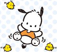 Sanrio Characters Pochacco--Piyo--Pico--Peebu Image001