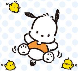 Sanrio Characters Pochacco--Piyo--Pico--Peebu Image001.jpg