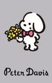 Sanrio Characters Peter Davis Image008