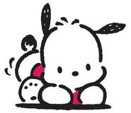 Sanrio Characters Pochacco Image002